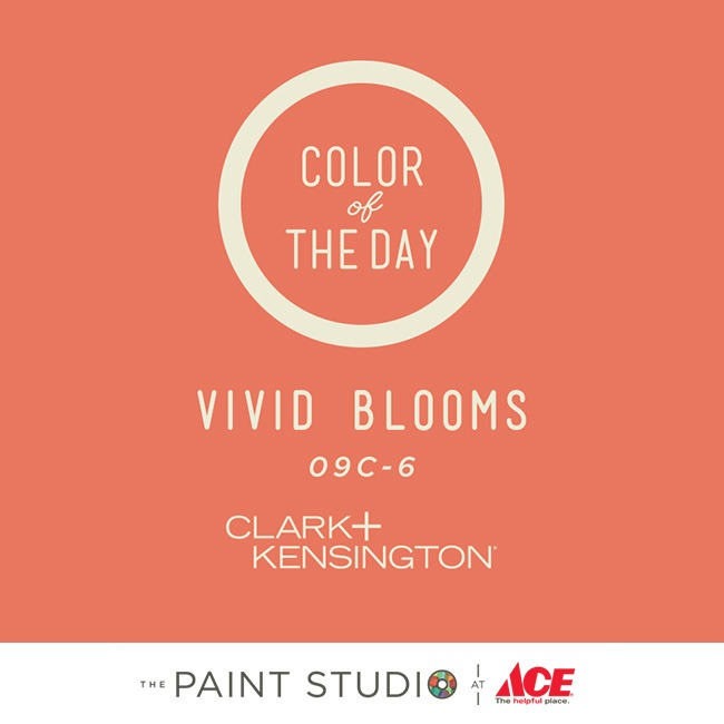 Paint Chips Vivid Blooms