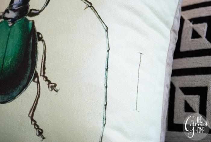 Vintage Beetle Scientific Illustration Pillows 11