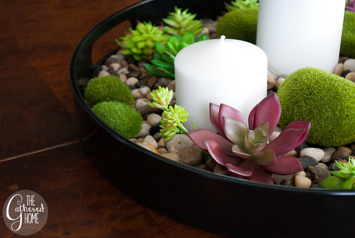 DIY Succulent Rock Garden Centerpiece The Gathered Home