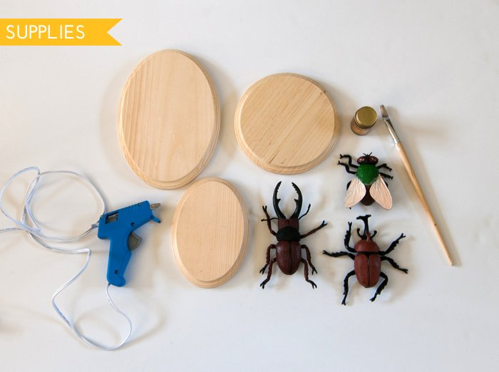 DIY Gilded Insect Plaques Supplies