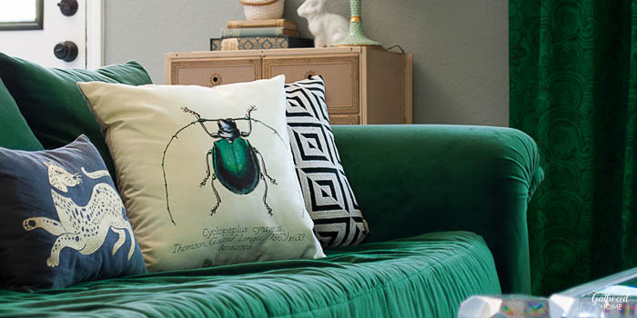 DIY vintage beetle print pillow