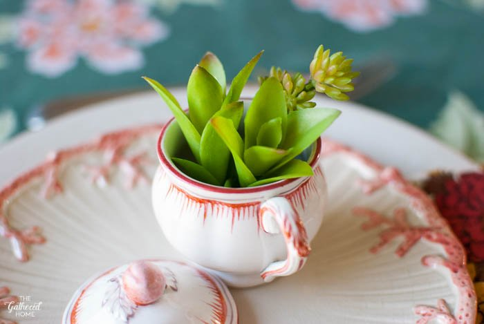 Spring Succulent Table Setting via The Gathered Home-4