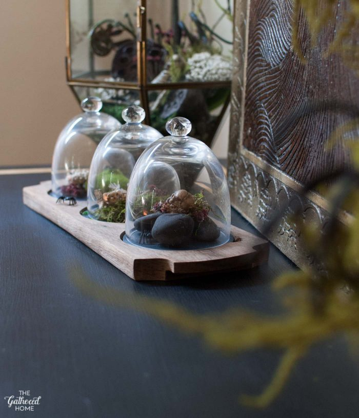 These beautiful terrariums hold a deliciously morbid twist when you take a closer look!