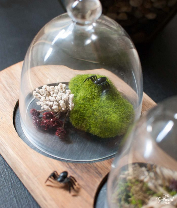 Elevate simple plastic spiders with this DIY terrarium idea!