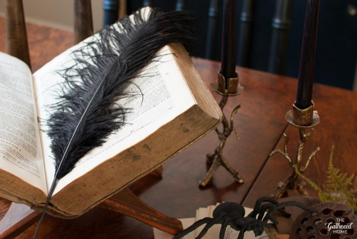 An antique book gets a sinister spin with the addition of an oversized black ostrich plume.