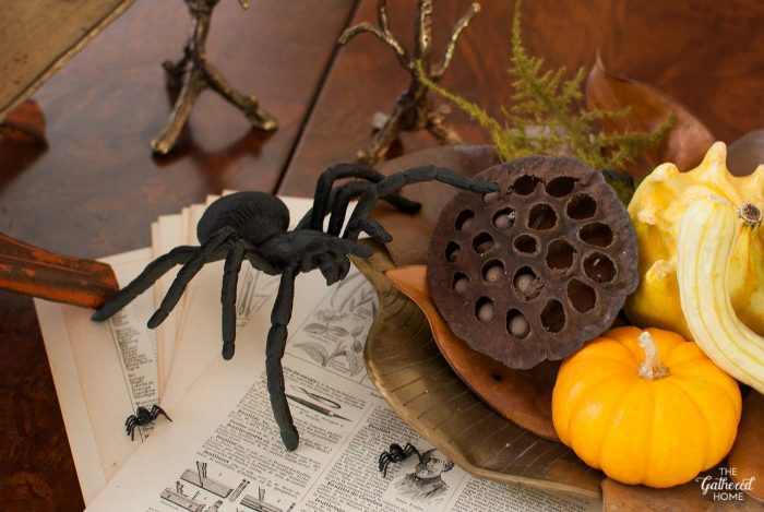This tarantula looks incredibly lifelike, but really it's a spray-painted children's toy.