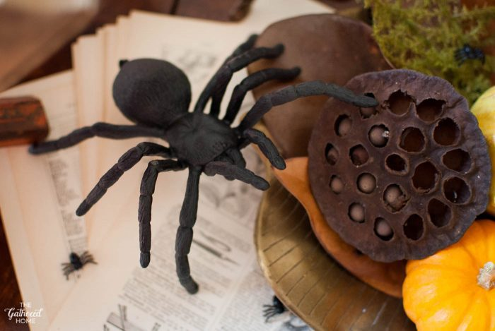 I find spiders beautiful to observe, yet terrifying - this Halloween tablescape is perfect!