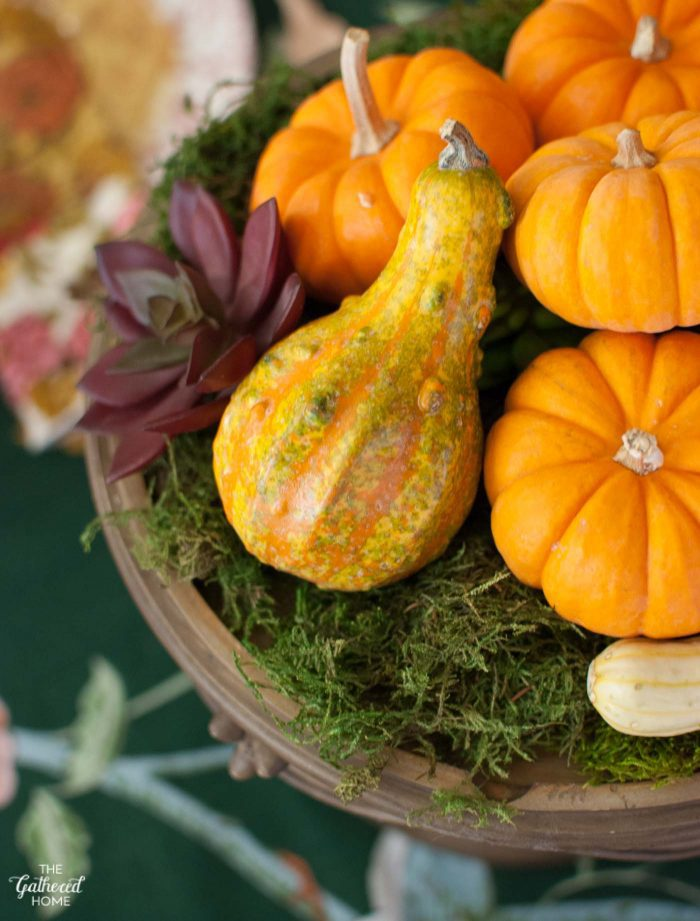 Thanksgiving table centerpiece: moss, pumpkins, and succulents.